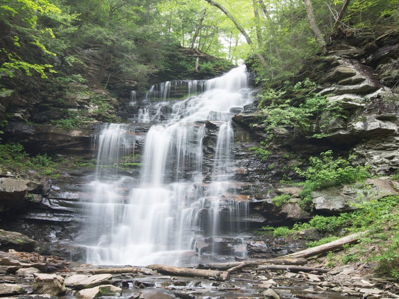 Ricketts Glen Waterfall within a short driving distance from Emily's Bed and Breakfast