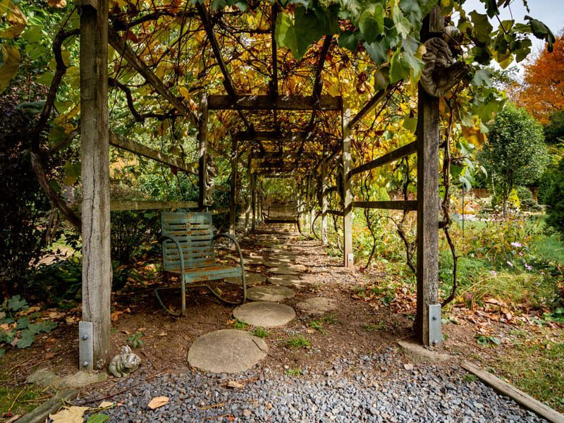 Emily's Bed and Breakfast has over 4 acres of beautiful grounds for your next photo shoot!